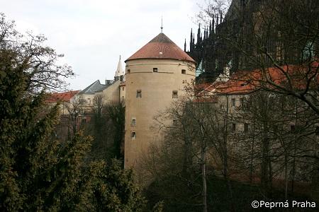 Mihulka, Pražský hrad, Perlička prasátka Pepříka